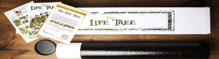 The Life Tree Box for Paper and Canvas Only Editions