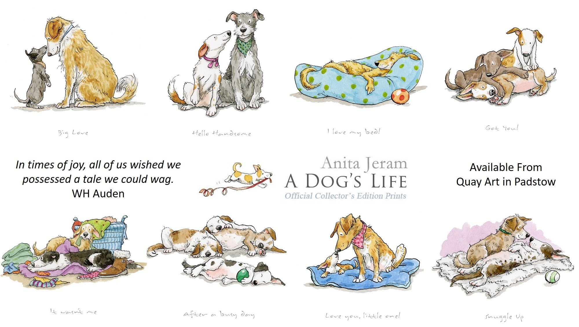 Collection of Limited Edition Dog prints